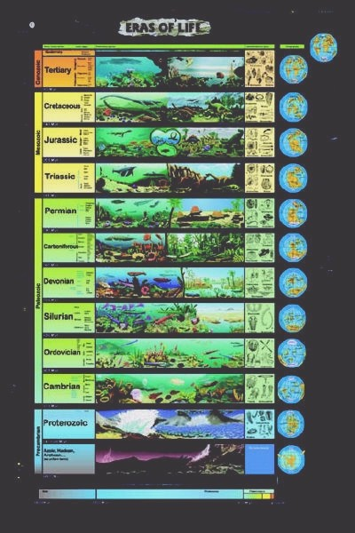 Chart of Geological Time (Infographic)
